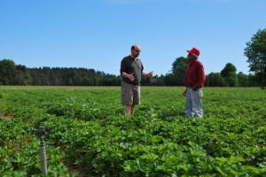 Stuart Mitchell, produce manager at Cherry Capital Foods, speaks with the field supervisor at Grossnickle Farms.